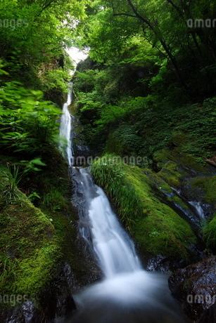 大岳山の大滝の写真素材 [FYI03118948]