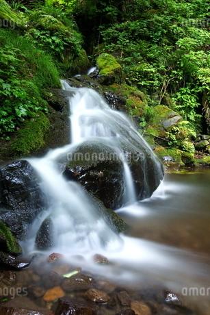 大岳山(東京秋川)渓谷のせせらぎの写真素材 [FYI03118991]