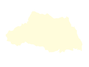 都道府県ポリゴン地図EPS埼玉県(境界無)のイラスト素材 [FYI03119540]