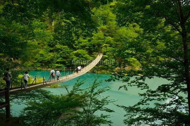 寸又峡温の夢の吊橋の写真素材 [FYI03119583]