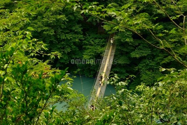 寸又峡温の夢の吊橋の写真素材 [FYI03119584]