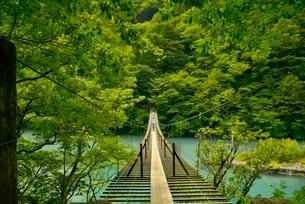 寸又峡温の夢の吊橋の写真素材 [FYI03119585]