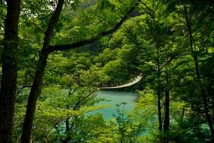 寸又峡温の夢の吊橋の写真素材 [FYI03119586]
