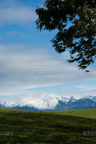 緑の草原と冠雪の山並み 十勝岳連峰の写真素材 [FYI03119726]