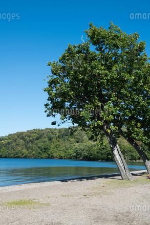 青い静かな湖の写真素材 [FYI03119733]