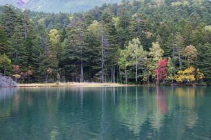 湖面に写る赤いモミジの写真素材 [FYI03119738]