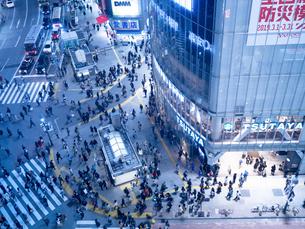 夕暮れの渋谷スクランブル交差点の写真素材 [FYI03119773]