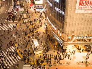夕暮れの渋谷スクランブル交差点の写真素材 [FYI03119774]
