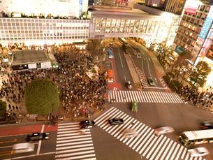 夕暮れの渋谷スクランブル交差点の写真素材 [FYI03119775]
