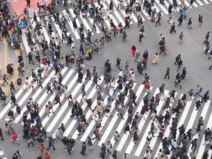 渋谷スクランブル交差点の写真素材 [FYI03119777]