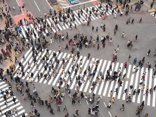 渋谷スクランブル交差点の写真素材 [FYI03119778]