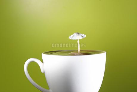 ミルクのスプラッシュの写真素材 [FYI03119832]
