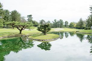 ゴルフ場 池と グリーンと 樹木 の写真素材 [FYI03120071]