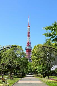 東京タワーの写真素材 [FYI03120108]