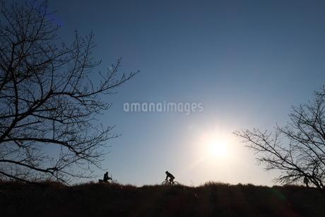 冬枯れの道を行き交う自転車(シルエット)の写真素材 [FYI03120348]