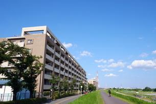 多摩川堤防道路の風景の写真素材 [FYI03120365]