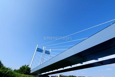 下から見た是政橋(多摩川中流域の橋)の写真素材 [FYI03120366]