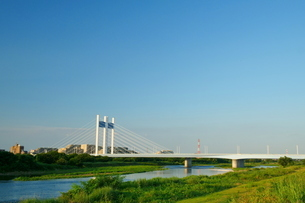 多摩川に架かる是政橋遠景の写真素材 [FYI03120369]