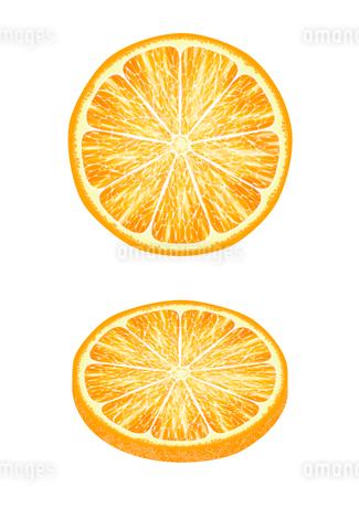 スライスしたオレンジのイラスト素材 [FYI03120605]