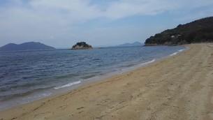 大島の砂浜の写真素材 [FYI03120708]