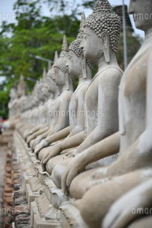 アユタヤの石像の写真素材 [FYI03120750]