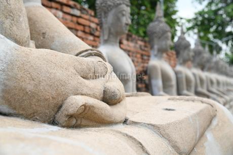 アユタヤの石像の写真素材 [FYI03120753]