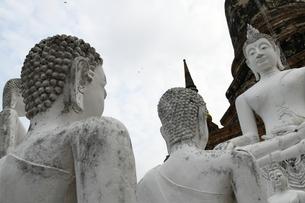 アユタヤの石仏の写真素材 [FYI03120754]