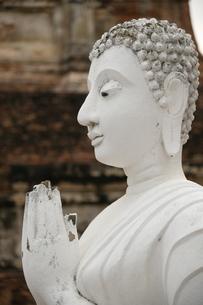 アユタヤの石像の写真素材 [FYI03120756]
