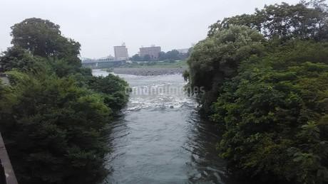 利根川(群馬県前橋市)の写真素材 [FYI03120802]