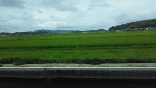 岡山の田圃の写真素材 [FYI03120807]