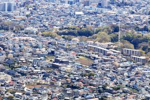 郊外の住宅街の写真素材 [FYI03120897]