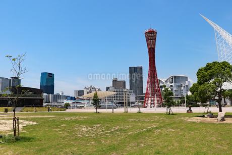 神戸・メリケンパークの芝生広場の写真素材 [FYI03121042]
