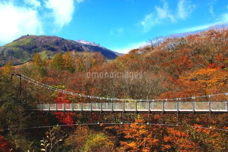 那須弁天吊り橋の写真素材 [FYI03121045]