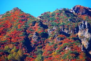 那須紅葉の朝日岳の写真素材 [FYI03121050]