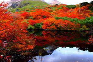 那須ひょうたん池に写る茶臼岳の写真素材 [FYI03121053]