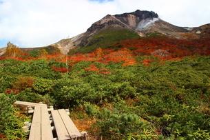 那須姥が平から望む茶臼岳の紅葉の写真素材 [FYI03121054]