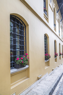 窓辺にゼラニュームのフラワーポットを飾る建物の写真素材 [FYI03121150]