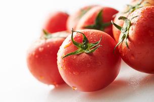 トマトの写真素材 [FYI03121345]