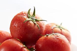 トマトの写真素材 [FYI03121347]