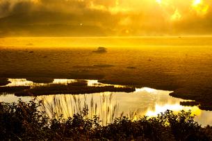 霧ヶ峰高原 朝日に輝く八島ヶ原湿原の朝霧空映す八島ヶ池の写真素材 [FYI03121381]