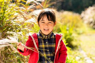 秋のススキ畑で遊ぶ子供の写真素材 [FYI03121505]