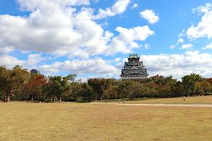 秋の大阪城公園・西の丸庭園の写真素材 [FYI03121747]