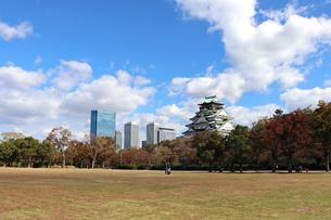 秋の大阪城公園の写真素材 [FYI03121748]