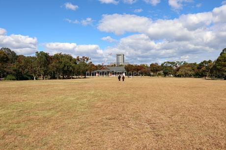 秋の公園の写真素材 [FYI03121749]
