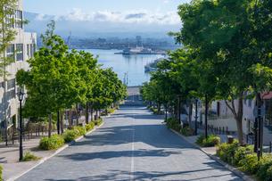 函館の八幡坂の写真素材 [FYI03121808]