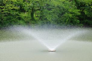 噴水の写真素材 [FYI03122713]