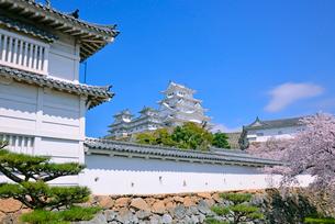 姫路城の連立天守群と狭間の写真素材 [FYI03122999]
