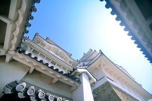 姫路城にて見上げる天守の写真素材 [FYI03123008]