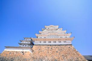 姫路城にて見上げる大天守と青空の写真素材 [FYI03123012]