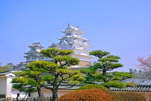 姫路城の連立天守群の写真素材 [FYI03123014]